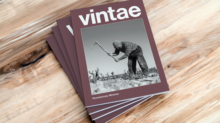 catalogo-2019-vintae